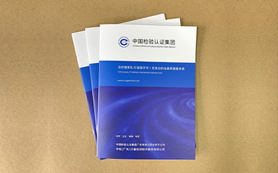 in-Catalogue,-Brochure,-Profile-Công-Ty-bấm-kim-giữa